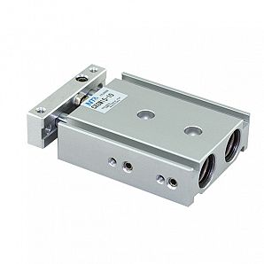 CXS Series Dual Rod Pneumatic Cylinder